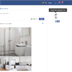Flatbook ger ett mer avskalat Facebook