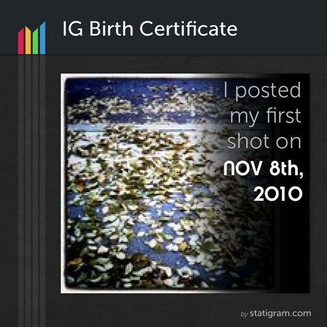 Statigram - min första bild på Instagram